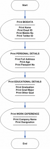 Flowchart : Program to Write a Biodata in C++