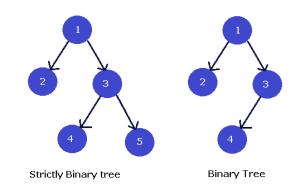Strictly Binary Tree