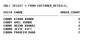 Solution(G) - An Instance of Customer_Details View