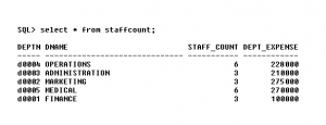 Staff Count - Project Database