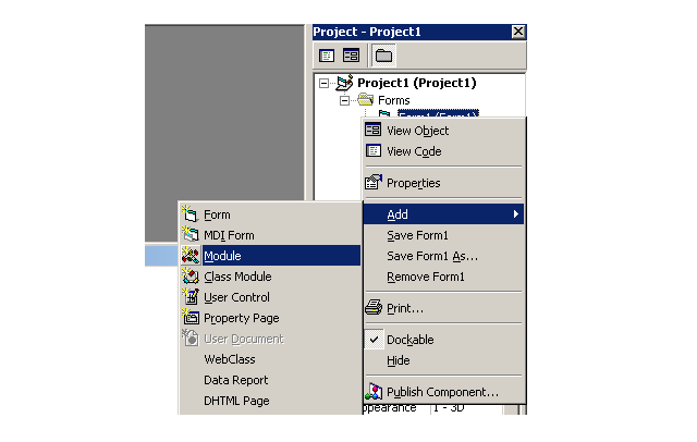 Figure2-Create a Module in VB 6 for Database Connectivity